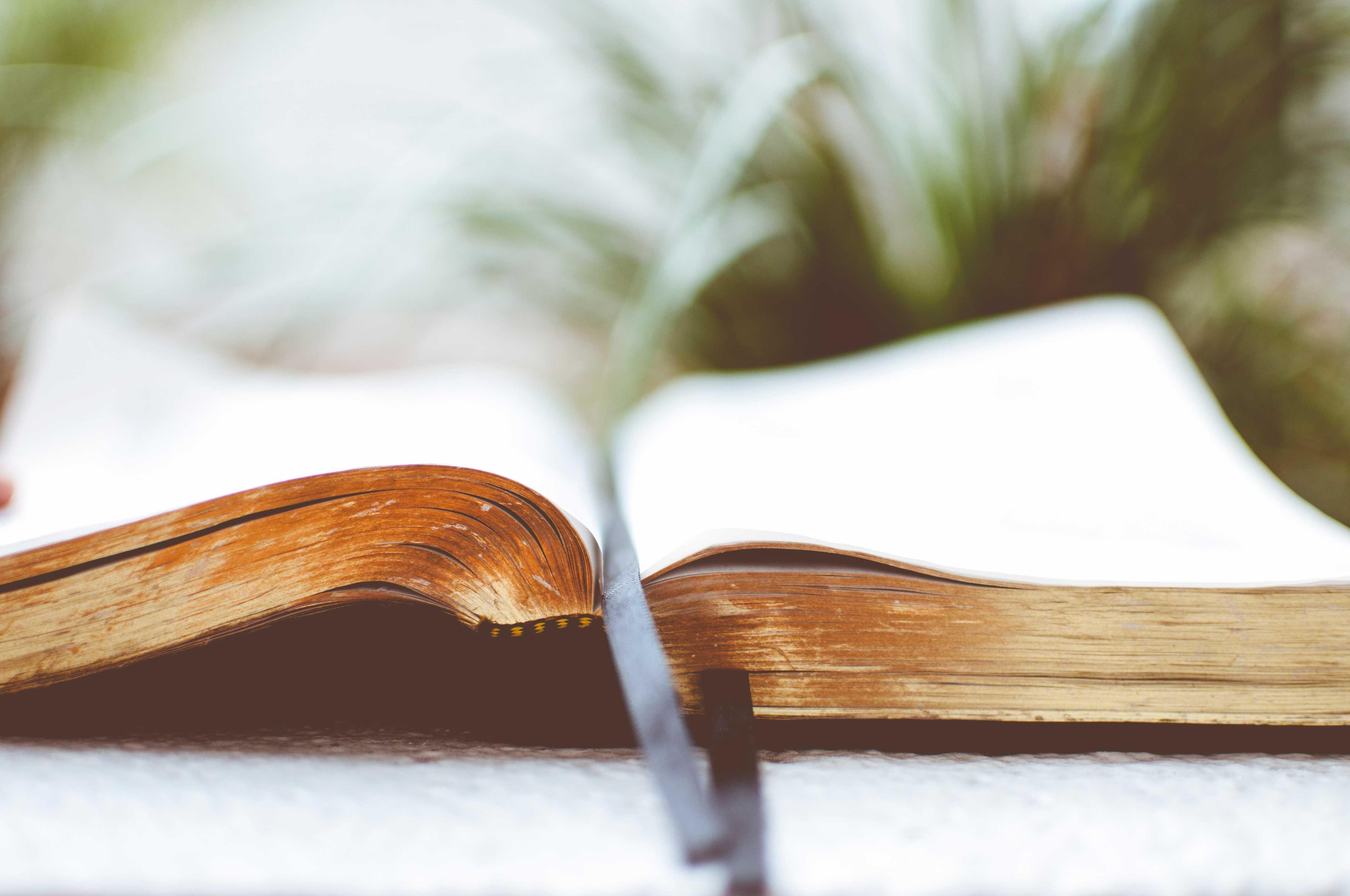 читать сильный заговор черного колдовства