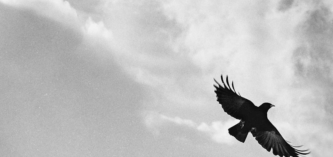 СПОСОБ КАК САМОЙ СДЕЛАТЬ ПРИВОРОТ НА ЛЮБОВЬ - ПРАКТИЧЕСКАЯ МАГИЯ